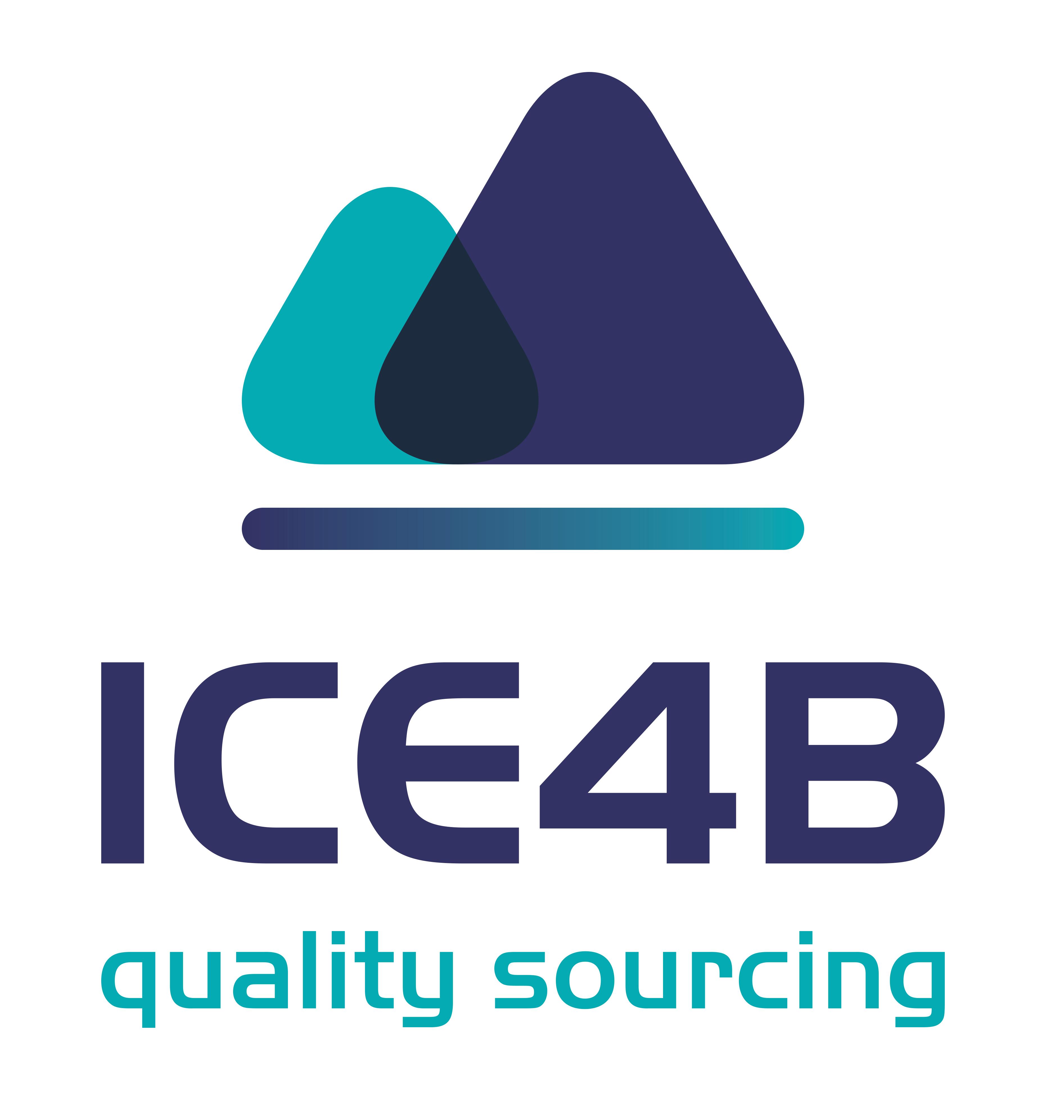 ICE4B.pl - środki ochrony osobistej - maseczki, fartuchy, dezynfekcja